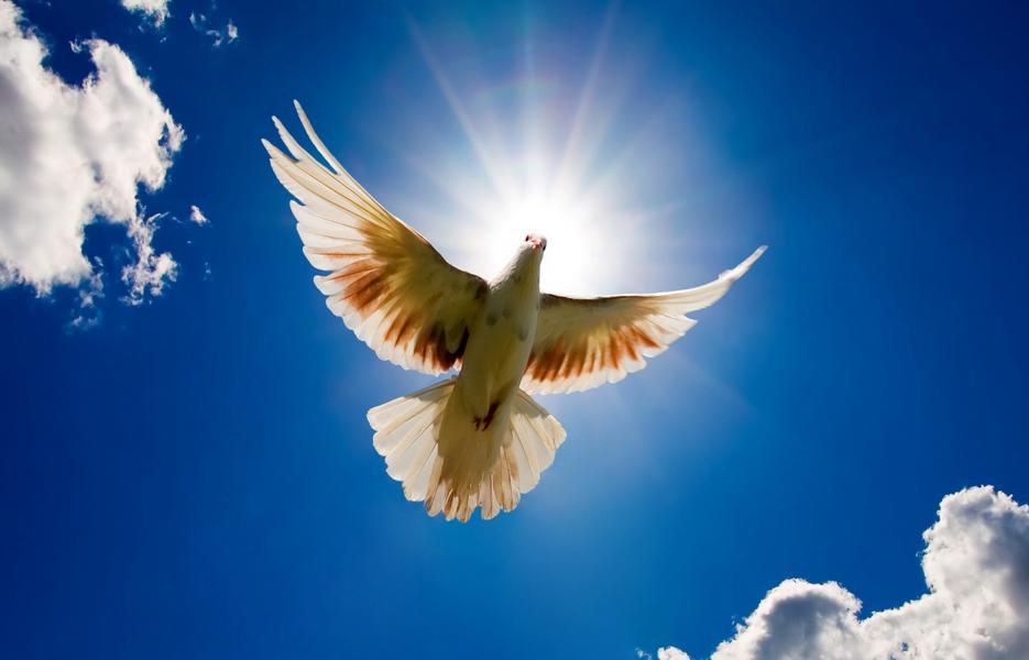 Послание с небес